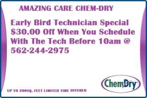 Early Bird Technician Special $30 OFF Book By 10AM