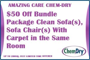 $50 OFF Bundle Package – Sofa And Chairs With Carpet Same Room