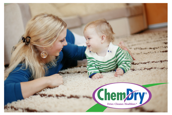 carpet cleaning la mirada